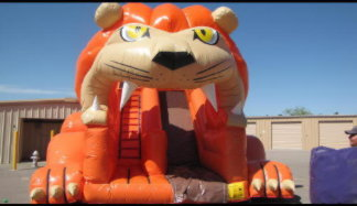 Lion Slide that is 20 Feet Tall!!! You have to try this!