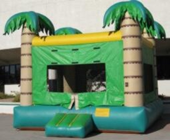 Tropical Standard Castle 15′ x 15′