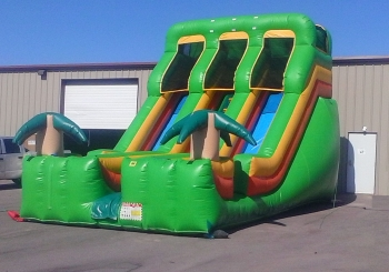 20 Foot Tropical Dual Lane Slide