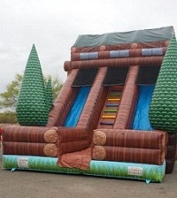 25 Foot Log Cabin Duel Lane Slide