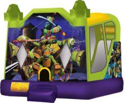 Teenage Mutant Ninja Turtles 4 in 1 combo